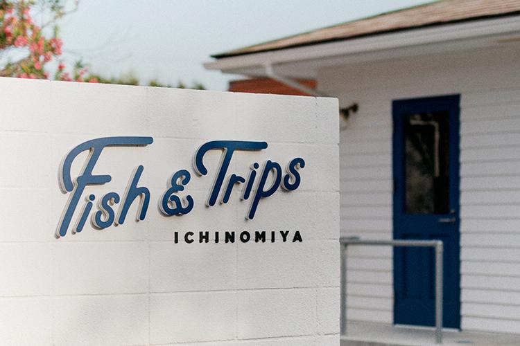 FISH & TRIPS VI DESIGN